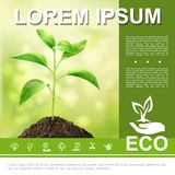 Realistic Ecological And Natural Template vector illustration