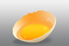 Realistic egg Stock Photography