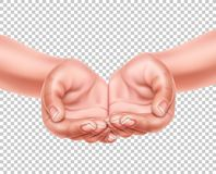 Realistic empty hands cupped together vector 3d. Realistic hands cupped together showing product offering, carrying or presenting. Charity, save the earth royalty free illustration