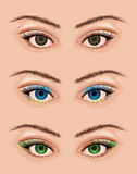 Realistic eyes Royalty Free Stock Image