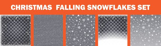 Realistic falling snowflakes set . Isolated on transparent background. Vector illustration. Realistic falling snowflakes set.Set of 5 realistic falling royalty free illustration