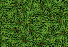Realistic Fir Branches Background, Christmas Tree, Pine. Vector Illustration. EPS10 Royalty Free Stock Photos