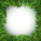 Realistic Fir Branches.. Realistic Fir Branches. Merry Christmas and New Year Winter Natural Background. Vector Illustration EPS10 Stock Image