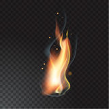 Realistic fire flame. Vector illustration. Transparent background Stock Photos