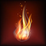 Realistic fire flame. Vector illustration. Warm brown background Stock Images