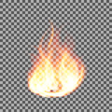 Realistic fire flames on a transparent background. Vector illustration. Realistic  fire flames on a transparent background. Vector illustration Royalty Free Stock Photography