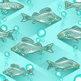 Realistic fish seamless Stock Photography