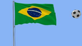 Realistic fluttering flag of Brazil and soccer ball flying around on a blue background, 3d rendering. Realistic fluttering flag of Brazil and soccer ball flying Royalty Free Stock Photo