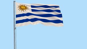 Realistic fluttering flag of Uruguay and soccer ball flying around on a transparent background, 3d rendering, PNG format with Alph. A channel transparency stock footage