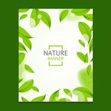 Realistic Fly Green Leaves Flyer Banner Posters Card. Vector. Realistic Fly Green Leaves Flyer Banner Posters Card Placard Template Space for Your Text or vector illustration