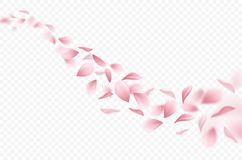 Sakura Realistic Background vector illustration