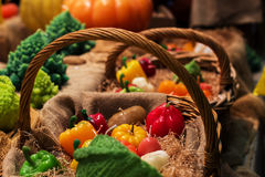 Realistic fruits for holidays candles Royalty Free Stock Photo