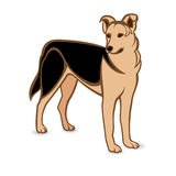 Realistic German Shepherd Royalty Free Stock Photo
