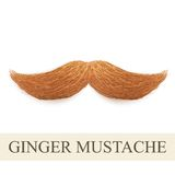 Realistic ginger vintage curly mustache Royalty Free Stock Images