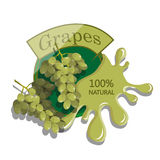 Realistic Grapes. Royalty Free Stock Images