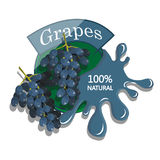 Realistic Grapes. Royalty Free Stock Photography