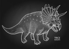 Realistic graphic dinosaur. Graphic triceratops. Vector dinosaur isolated on the chalkboard. Animal of the prehistoric period in engraving technique Stock Photo