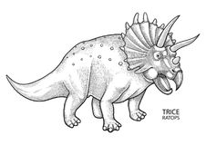 Realistic graphic dinosaur. Graphic triceratops. Vector dinosaur isolated on white background. Animal of the prehistoric period in engraving technique. Coloring Royalty Free Stock Photos