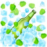 Realistic green bottle of beer flies out from ice cubes among flying depth of field hop cones and ice on white. Background Royalty Free Stock Photos