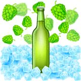 Realistic green bottle of beer stand in ice cubes among flying depth of field hop cones on white. Background Royalty Free Stock Photography