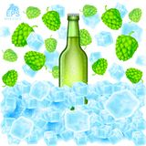 Realistic green bottle of beer stand in ice cubes among flying hop cones and depth of field ice on white. Background Royalty Free Stock Images