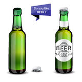 Realistic green and brown beer bottles set  Royalty Free Stock Images