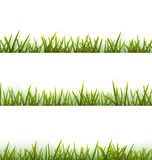 Realistic green grass collection isolated on white Royalty Free Stock Photos