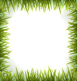 Realistic green grass like frame isolated on white Royalty Free Stock Photo