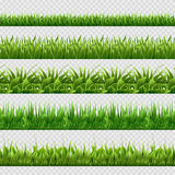 Realistic green grass seamless vector backgrounds isolated Royalty Free Stock Photo