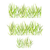 Realistic green grass Royalty Free Stock Image