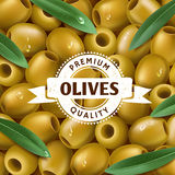 Realistic Green olives background, with a leafs. Olive label, icon. Vector illustration Stock Photography