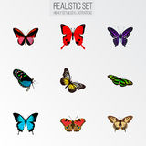 Realistic Green Peacock, Summer Insect, Sangaris And Other Vector Elements. Set Of Beauty Realistic Symbols Also Stock Photo