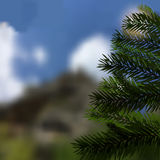 Realistic green spruce. Beautiful, natural background. Fir tree - a symbol of Christmas and New Year. Vector illustration Stock Photo