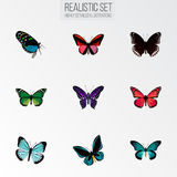 Realistic Hairstreak, Demophoon, Callicore Cynosura And Other Vector Elements. Set Of Butterfly Realistic Symbols Also stock illustration