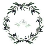 Realistic Hand-drawn Olives Wreath Vector Stock Images