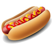 Realistic hot dog. With ketchup and mustard Royalty Free Stock Photo