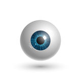 Realistic human eyeball. In vector Royalty Free Stock Image