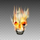The human skull on fire. A realistic human skull in the fire. Isolated object with the preservation of the transparency of the flame Stock Photos