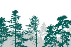 Realistic illustration of a green forest with coniferous trees w royalty free illustration