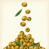 Realistic illustration of green olives, pitted with leaves. Vector illustration stock illustration