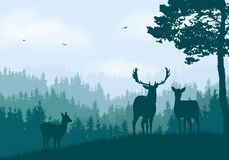 Realistic illustration of mountain landscape with coniferous forest under clear blue and green sky with white clouds. Deer, doe. And little deer standing and royalty free illustration