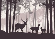 Realistic illustration of mountain landscape with coniferous forest under sky with haze. Deer, doe and little deer standing and. Looking into valley - retro royalty free illustration