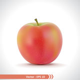 Realistic Illustration of A Red Apple Royalty Free Stock Image