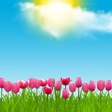 Realistic Illustration of a sunny day with a sunny and cloudy sky. Sunny day with a sunny and cloudy sky Stock Images