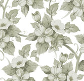 Realistic isolated apple flowers pattern. Vintage baroque background. Wallpaper. Drawing engraving.  Royalty Free Stock Photography