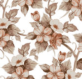 Realistic isolated apple flowers pattern. Vintage baroque background. Wallpaper. Drawing engraving.  Royalty Free Stock Images