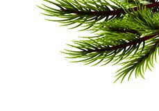 Realistic isolated fir banner background. Realistic Merry Christmas branch pine tree template. Xmas mock up conifer vector illustration. Isolated fir banner Stock Photo
