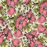 Realistic isolated flowers pattern. Vintage baroque background. Rose dogrose, rosehip, brier. Wallpaper. Drawing engraving. Realistic isolated flowers pattern Stock Photography