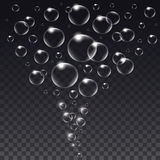 Realistic isolated Soap Bubbles. Stock Photography
