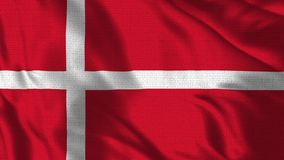 Realistic 4K - 30 fps flag of the Denmark waving in the wind. Seamless loop with highly detailed fabric texture. Loop ready in 4k resolution stock video